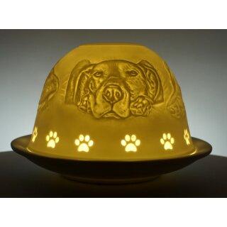 Dome Light Hunde